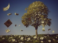 if-only-money-grew-on-trees